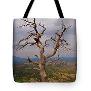 Testament To Endurance Tote Bag