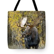 Teton Bull Moose Tote Bag by Gary Langley