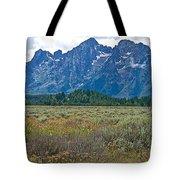 Teton Peaks And Flatland Near Jenny Lake In Grand Teton National Park-wyoming Tote Bag