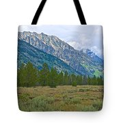 Tetons Above The Meadow In Grand Teton National Park-wyoming Tote Bag