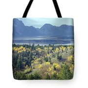 1m9209-tetons From Signal Mountain, Wy Tote Bag