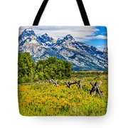 Tetons In The Spring Tote Bag