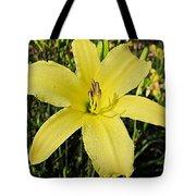 Tetrina's Daughter Daylily Tote Bag