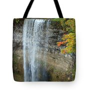 Tews Falls In Autumn Tote Bag