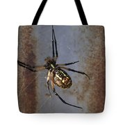 Texas Barn Spider In Web 2 Tote Bag
