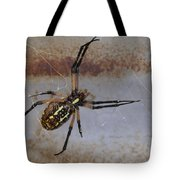Texas Barn Spider In Web 3 Tote Bag