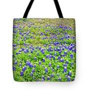 Texas Beauties Tote Bag
