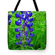 Texas Blue Bonnet Tote Bag
