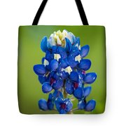 Texas Blue Tote Bag