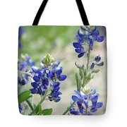 Texas Bluebonnets 01 Tote Bag