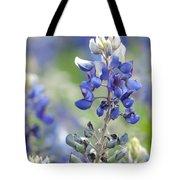 Texas Bluebonnets 04 Tote Bag