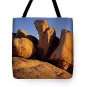 Texas Canyon Golden Boulders Tote Bag