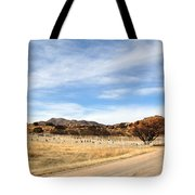 Texas Canyon In February Tote Bag