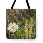 Texas Wildflowers V5 Tote Bag