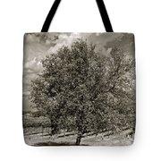 Texas Winery Tree And Vineyard Tote Bag