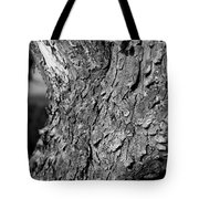 Texture In The Trees Tote Bag
