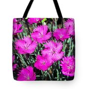 Textured Pink Daisies Tote Bag