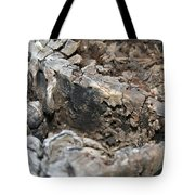 Textured Tree Stump Of Eucalyptus Tree  Tote Bag