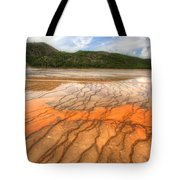 Textures Of The Grand Prismatic  Tote Bag