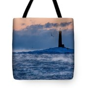 Thacher Island Lighthouse Seagull Passes Tote Bag