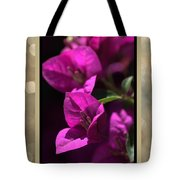 Thank You - Bougainvillea Flowers Tote Bag