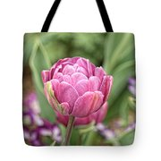 Thanksgiving Point - 3 Tote Bag