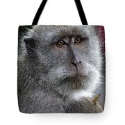 That Look 2 Tote Bag