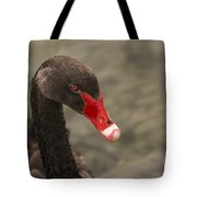 That Look Tote Bag