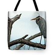 That Wind Is Cold Tote Bag