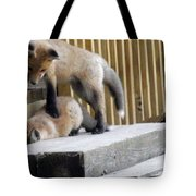 That's Not Helping - Two Fox Kits Tote Bag
