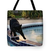 The Adventurous Feline Tote Bag