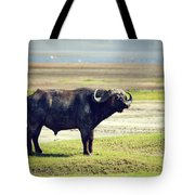 The African Buffalo. Ngorongoro In Tanzania. Tote Bag