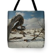 The Agony Of Living Or Dying Tote Bag