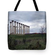 The Almost Forgotten Columns -- 2 Tote Bag