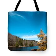 The Alpine Larch Tree On Bald Mountain Pond Tote Bag