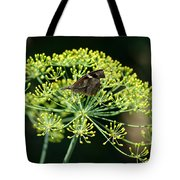 The American Snout Butterfly Tote Bag