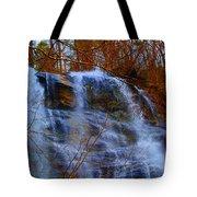 The Amicalola Waterfall Tote Bag