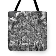 The Ancient Forest Tote Bag