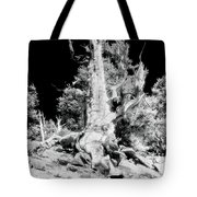 The Ancients - 1010 Tote Bag