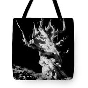 The Ancients - 1011 Tote Bag