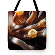 The Anemone Tote Bag