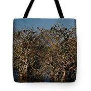 The Anhinga Trees Tote Bag