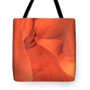 The Antelope Slide Tote Bag