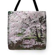 The Arboretum Cherry Blossoms Tote Bag