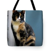 The Art Of Watching Tote Bag