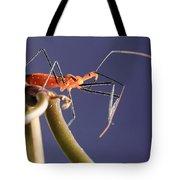 Garden Assassin Bug Tote Bag