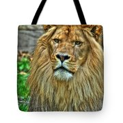 The Attentive Lazy Boy At The Buffalo Zoo Tote Bag