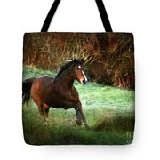 The Autumn Tote Bag