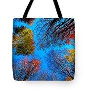 The Autumn Leaves At Potato Creek Tote Bag