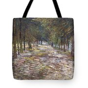 The Avenue At The Park Tote Bag
